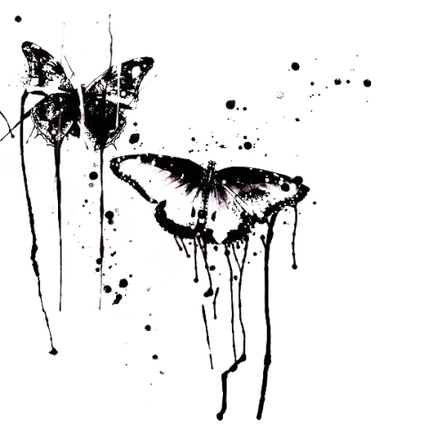 http://www.layoutsparks.com/pictures/butterfly-13
