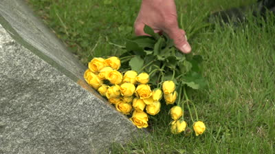 stock-footage-hand-laying-flowers-on-a-grave