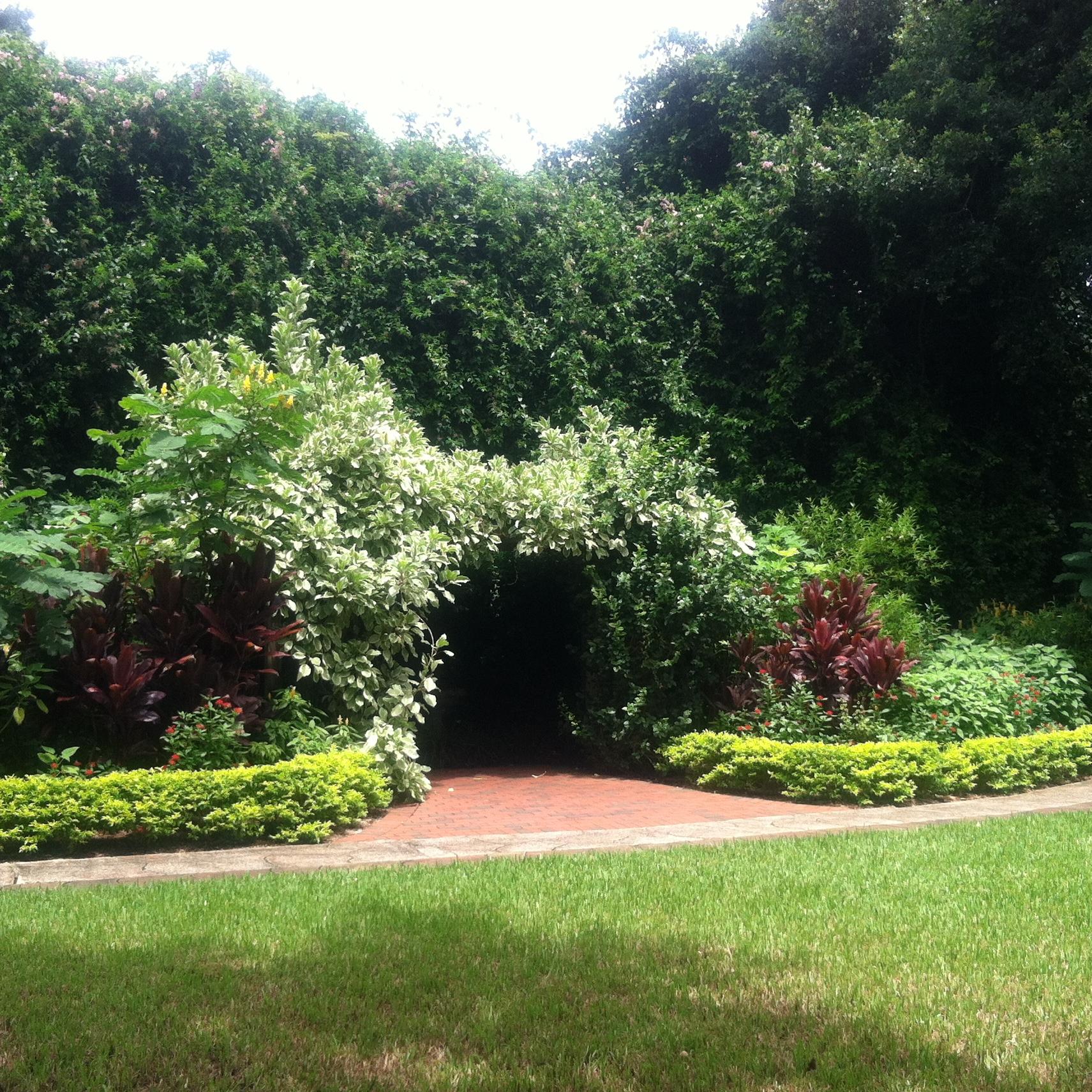 Beauty And Mystery At Sunken Garden St Petersburg Fl Wordifull