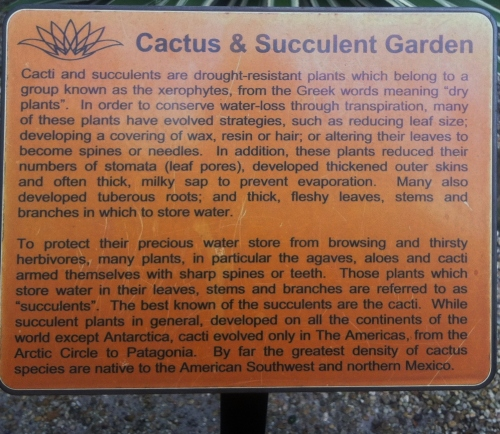 Cactus and Succulent Garden sign